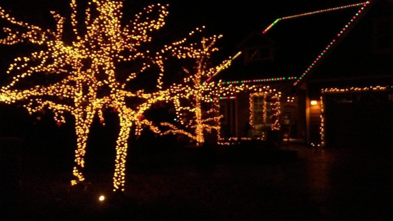 white holiday lights